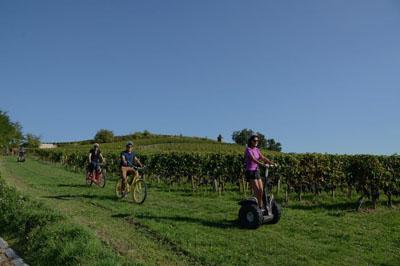 La route des vins Bordeaux, organisation de Team building