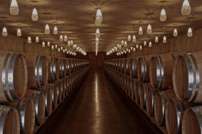 La route des vins Bordeaux, organisation de Week-end œnologie