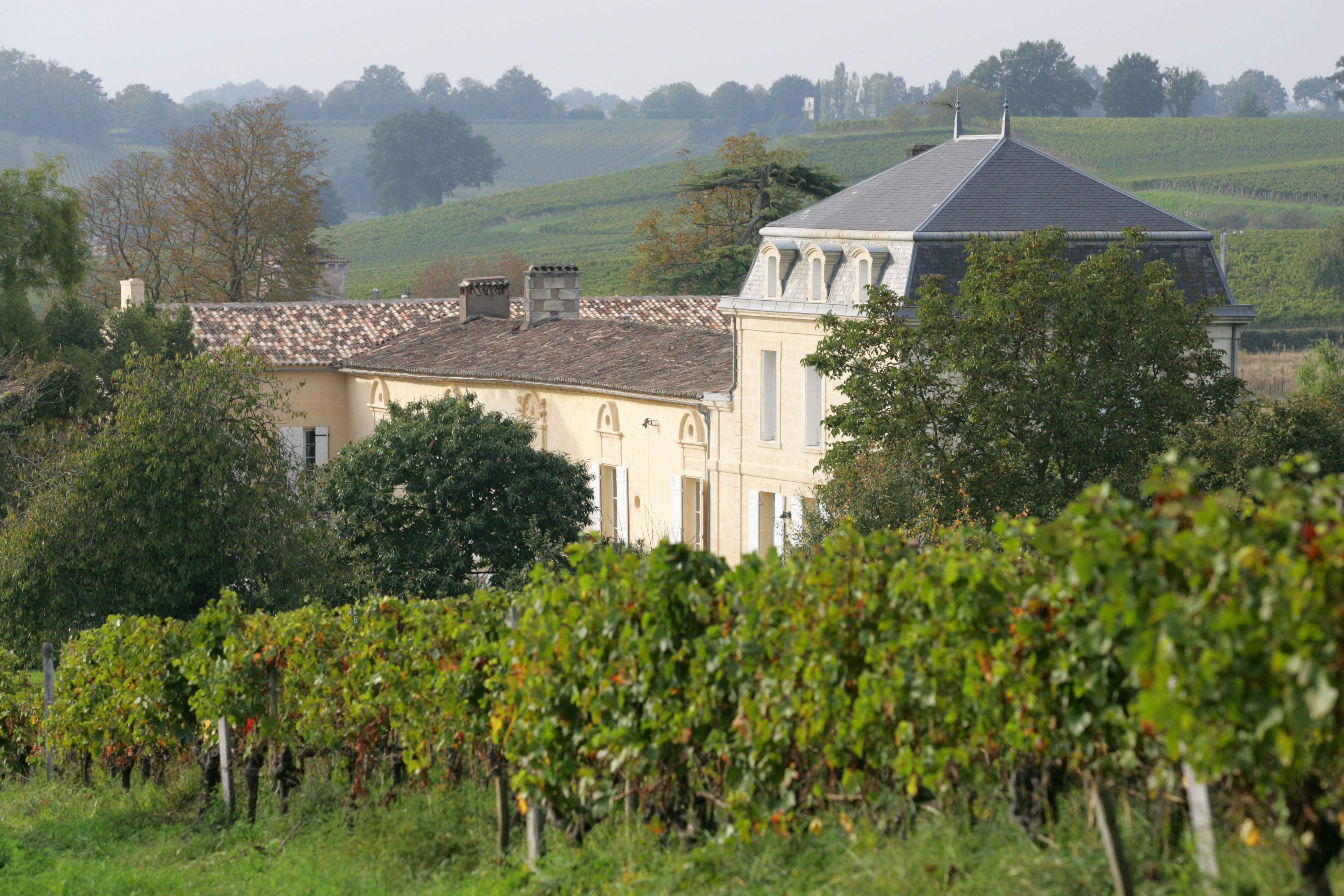 Château à Saint-Emilion au milieu des vignes