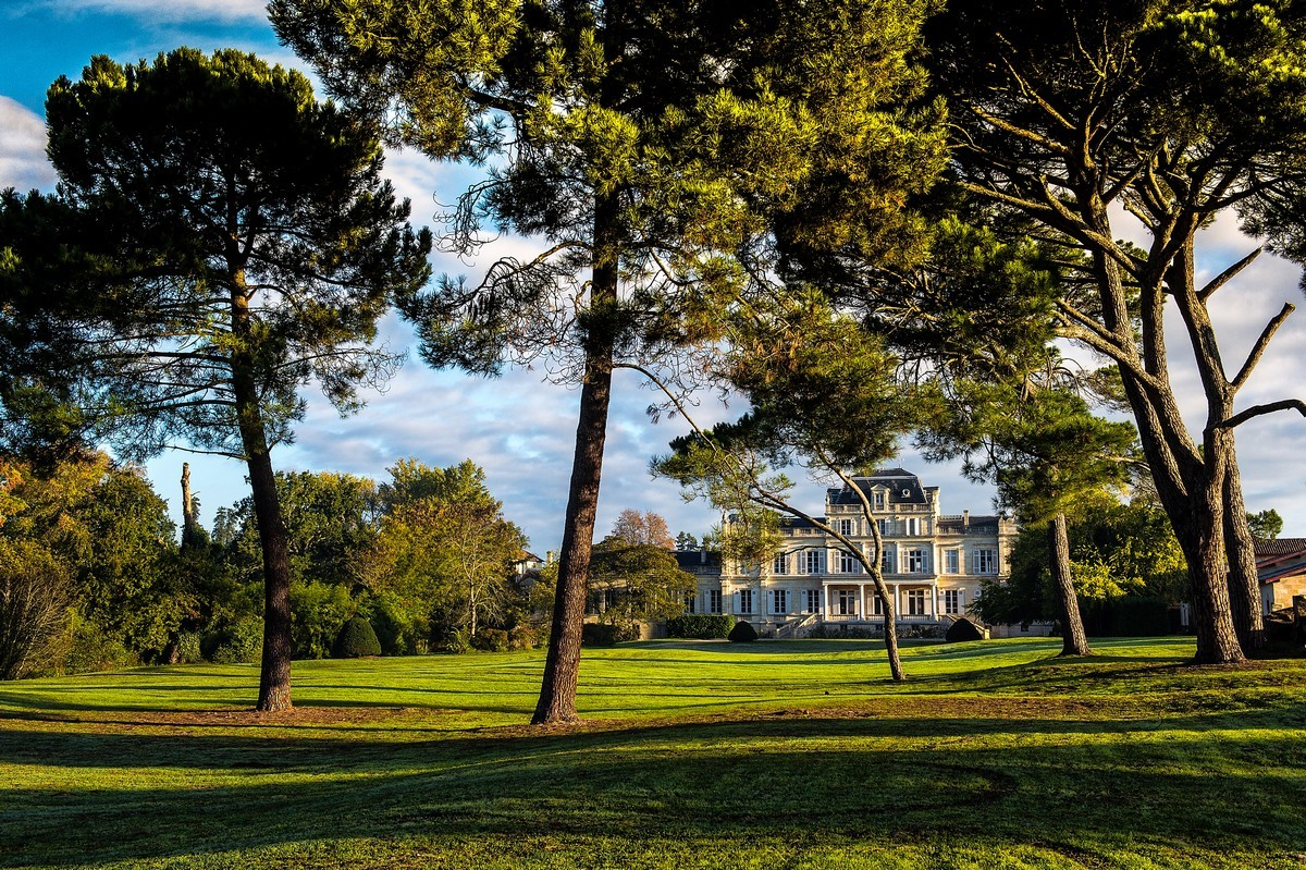 Parc, arbres et château grand cru classé
