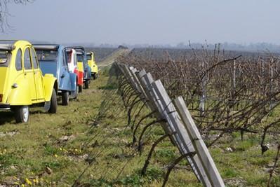 Rallye au coeur du vignoble de Bordeaux
