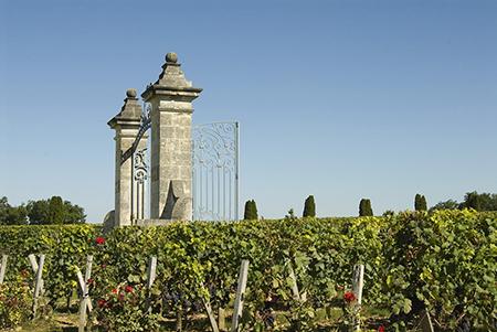 Château Bordeaux est un programme d'une journée pour visiter le meilleur du vignoble Bordelais. Visite de domaine viticole, dégustations sur route des vins.