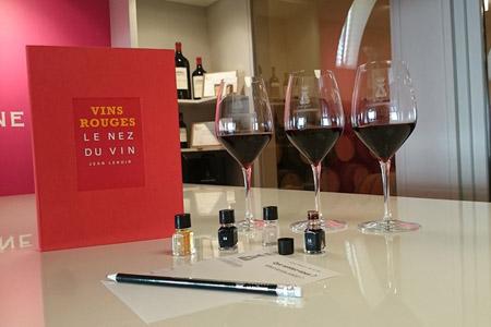 Cours œnologie dans une propriété viticole du Haut-Médoc, Margaux, Saint-Emilion et Pomerol. Stage œnologie pour apprendre à déguster le grand vin de Bordeaux