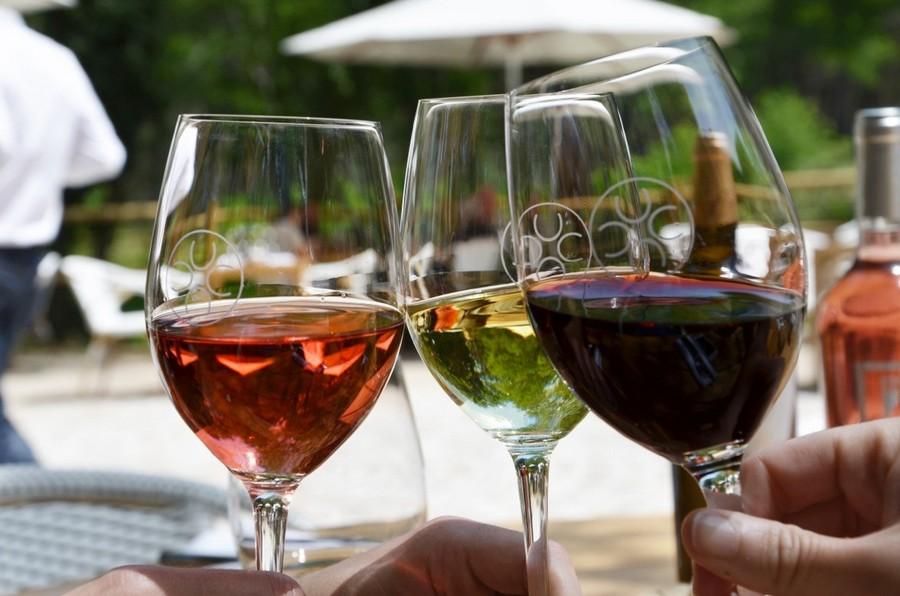 Dégustation de vin rouge, blanc sec à Bordeaux