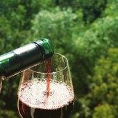 Bientôt bientôt, nous pourrons déguster à la propriété 😍❤️🍷 #winelover #vinsdebordeaux #vinsrouge #oenologie #oenotourisme #degustationdevin #plaisirdelavie #domaineviticole #saintemilliongrandcru #bordeaux #vignobles #medoc  #winetour #tourism #bonheur