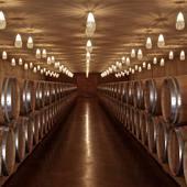 Pensez à un week-end œnologie à Bordeaux, programmes à partir de 135 €/p sur @laroute_des_vins  #oenologie #saintemilion #winelover🍷 #degustationdevin #vindebordeaux #ideecadeau #ideecadeaunoel #laviedechateau #coffretcadeau