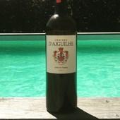 Cotes de Bordeaux Castillon avec agneau de Pauillac, délicieuse association 😋 sous fond de piscine du bassin d'Arcachon 😎  #vindebordeaux #vinrouge🍷 #winetasting🍷 #saintemilion #accord #sefaireplaisir #profitez #vin #passion #excellence #regalade